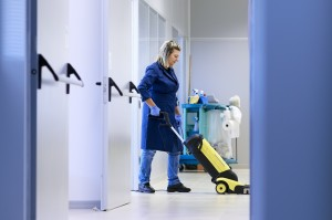 cleaning lady 1